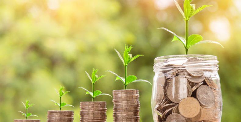 iptu-verde-o-que-e-como-conseguir-plantas-vaso-economia-economizar
